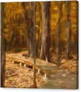 Boardwalk Through The Woods Canvas Print