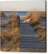 Boardwalk To The Beach Canvas Print