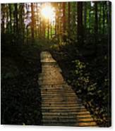 Boardwalk To The Sun Canvas Print