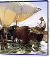 Boat Returning From A Fishing Trip Joaquin Sorolla Y Bastida Canvas Print