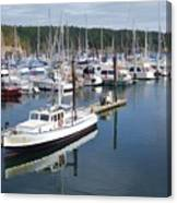 Boats At Friday Harbor Canvas Print