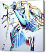 Bob Marley Colorful Canvas Print