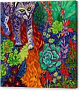 Bobcat Kachina  Canvas Print
