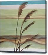 Bob's Beach Canvas Print
