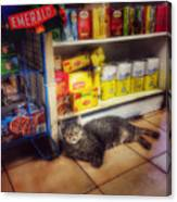 Bodega Cat - At Home In New York Canvas Print