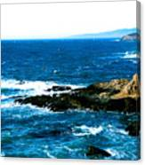 Bodega Pt.6 Canvas Print