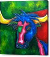 Boerne Longhorn Canvas Print