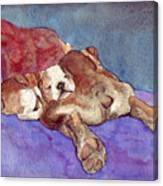 Bogs N Hugs Canvas Print
