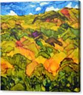Bohol Philippines Canvas Print