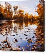 Boise River Autumn Glory Canvas Print