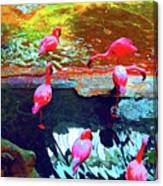Bold Modified Flamingoes Canvas Print