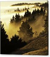 Bolinas Ridge Canvas Print