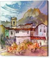 Bolulla 02 Canvas Print