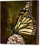Boneyard Butterfly Canvas Print