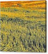 Bonneuil Harvest Canvas Print
