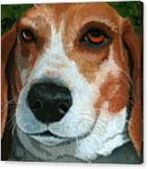 Bonnie - Beagle Painting Canvas Print