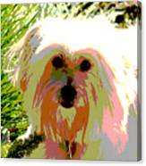 Bonnie In Color Canvas Print