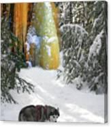 Boofies Great Adventure Canvas Print