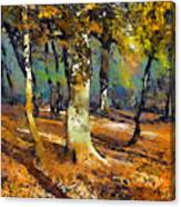Booker Woods Canvas Print