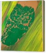 Boot Top In A See Of Grass Canvas Print