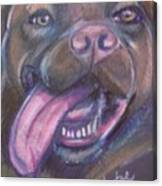Bordeaux Mastiff Portrait Canvas Print