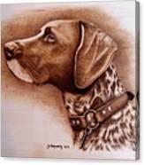 Boscoe Canvas Print