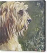 Bosley's Garden Portrait Canvas Print