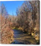 Bosque De Rio De Taos Canvas Print