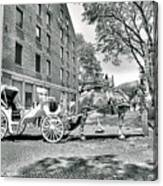 Boston Buggy Canvas Print