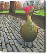 Boston Ducklings Getting Their Pink On Canvas Print