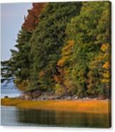 Boston In The Fall Canvas Print