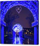 Boston Ma Christopher Columbus Park Trellis Lit Up For Valentine's Day Rainy Night Canvas Print