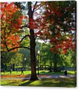 Boston Public Garden Autumn Tree Morning Light Walk In The Park Canvas Print
