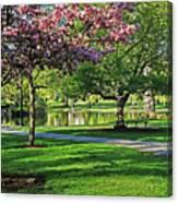 Boston Public Garden Pond Through The Cherry Blossom Spring Day Canvas Print