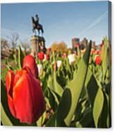 Boston Public Garden Tulips And George Washington Statue 2 Canvas Print