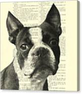 Boston Terrier Portrait In Black And White Canvas Print