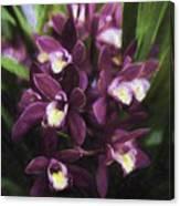 Botanic Garden Orchid Bouquet 5 Canvas Print