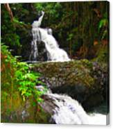 Botanic Gardens Waterfall Canvas Print