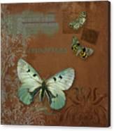 Botanica Vintage Butterflies N Moths Collage 4 Canvas Print