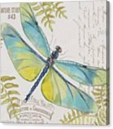 Botanical Dragonfly-jp3423b Canvas Print