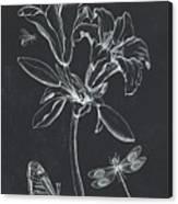 Botanique 3 Canvas Print