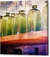 Bottle Row Canvas Print