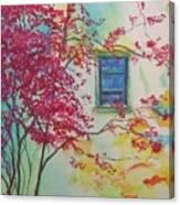 Bouganvilla And Blue Shutter Canvas Print