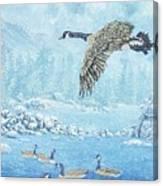 Boulder Bay Geese Canvas Print