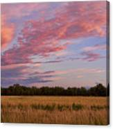 Boulder County Colorado Country Sunset Canvas Print
