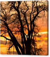 Boulder  County Sunset Canvas Print