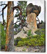 Boulder Mountain Canvas Print