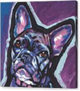 Bouledogue Baby Canvas Print