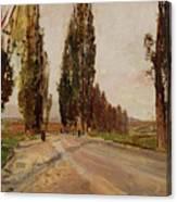 Boulevard Of Poplars Near Plankenberg Canvas Print