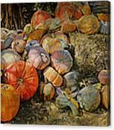 Bountiful Fall Harvest Canvas Print
